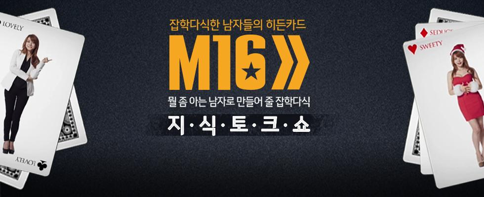 잡학다식한 남자들의 히든카드 M16