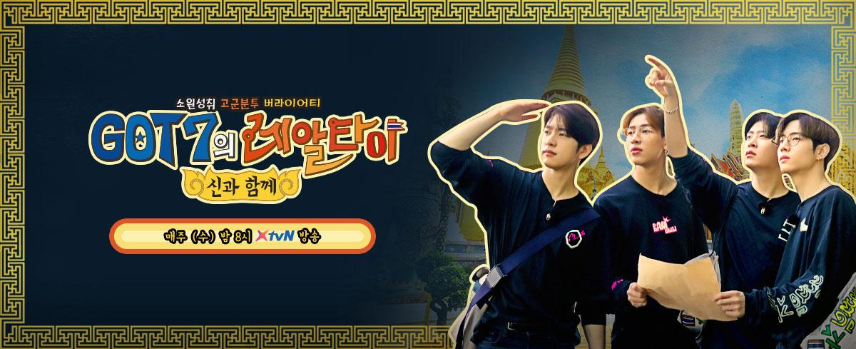 2019년 기해년 (己亥年) '황금 돼지띠'의 해!