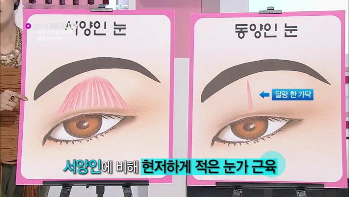 6) 이에반해 현저하게 적은 눈가의 근육인 동양인 눈. 눈꺼풀을 끌어올리는 힘도 약해 동양인분들인 거의 쌍커풀눈이 적지요?! 근육이 있어야 할 자리에 지방이 자리잡은 동양인의 눈은 지방이 많이 모여 있어 독소가 쌓이기 쉽다고 합니다. 독소가 쌓일 수록 노화는 빠르게 진행되는 것이지요.. 특히 쌍커풀 수술을 하게 되면 시간이 지나면서 눈가의 림프관이 끊어져  독소배출이 원활하지 않게 됩니다.