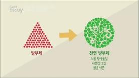 파라벤을 대체할 수 있는 천연 방부제가 많이 나오는 추세에요! 식물 항생물질이나 에센셜 오일, 발효 성분들로 피부에 친화적인 천연 방부제들이 많이 나오고 있다고 해요~