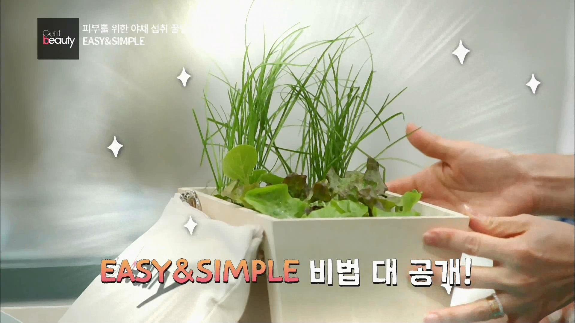 야채 섭취 EASY & SIMPLE 비법을 공개해 드릴게요