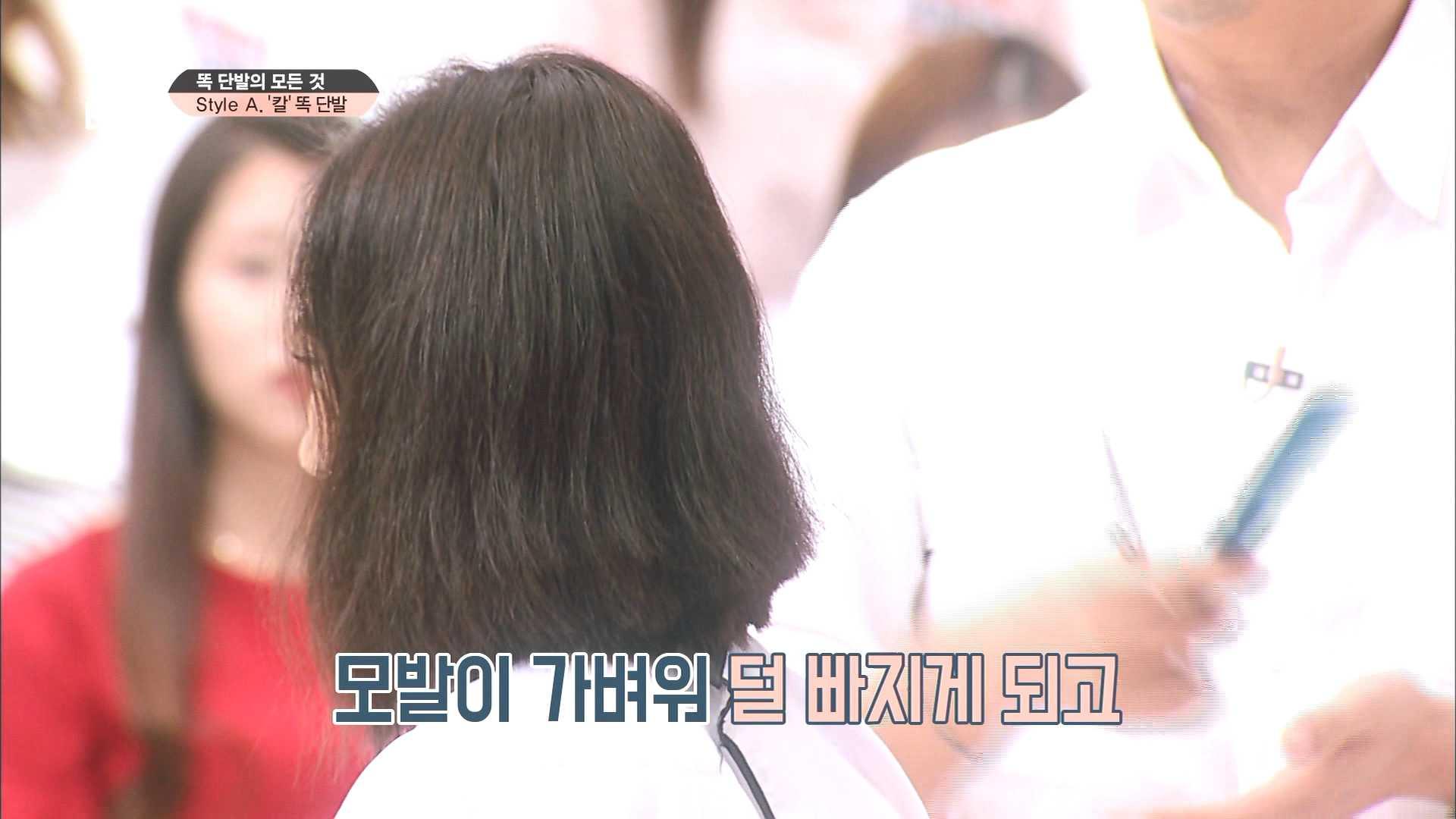 사실 머리카락을 자르면 좋은 점이 너무 많지요!! 일단 모발이 가벼워 덜 빠지고 샴푸값 걱정도 NO! NO!