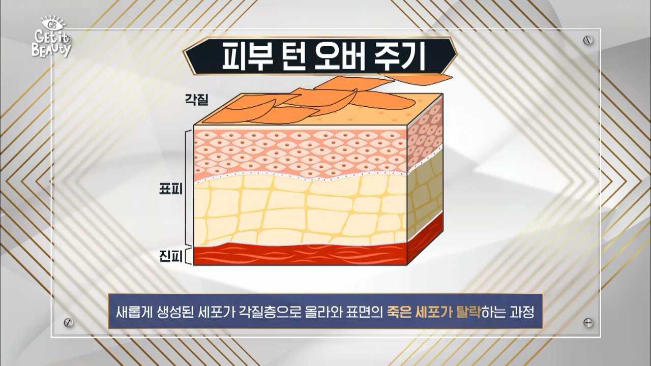 피부 기저층에서 새로 생성된 세포가 각질층으로 올라와서  각질층이 떨어져나가는 주기가 바로  턴 오버 주기!