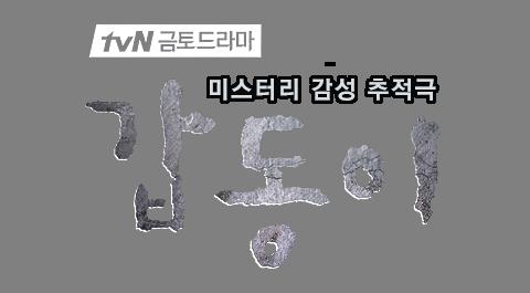 tvN 금토 드라마 미스터리 감성 추적극 갑동이