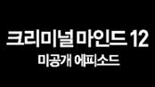 크리미널 마인드12: 미공개 에피소드
