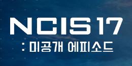 NCIS 17: 미공개 에피소드