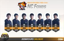 NC Foxes