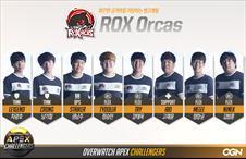 ROX Orcas