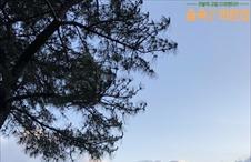 박신혜가 담아온 아름다운 풍경 ♡ (TV로 보면 오조오억배 멋지대요)